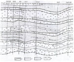 Отображение макроструктуры и микронеоднородности на геологическом профильном разрезе